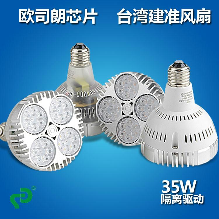 PAR30专业LED射灯